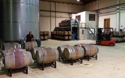 05 étapes essentielles à la fabrication du vin