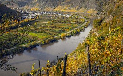 Les meilleures destinations viticoles européennes