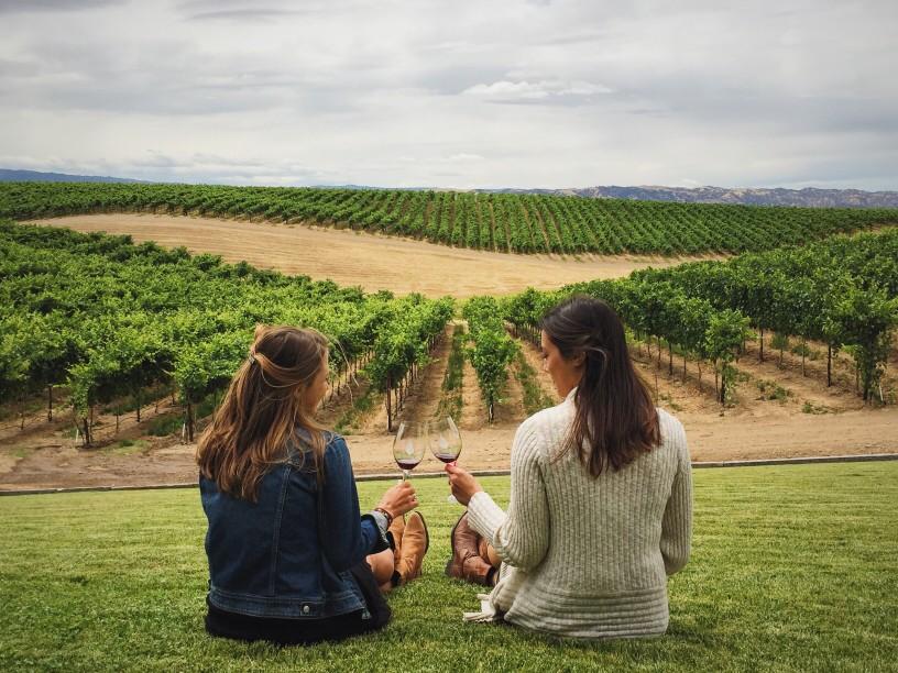 Découvrir les vins bionadynamiques plus respectueux de l'environnement